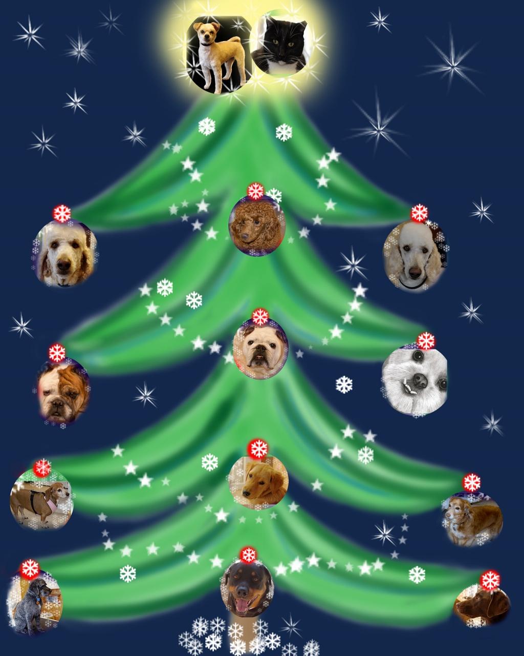 canine xmas tree (1024x1280)